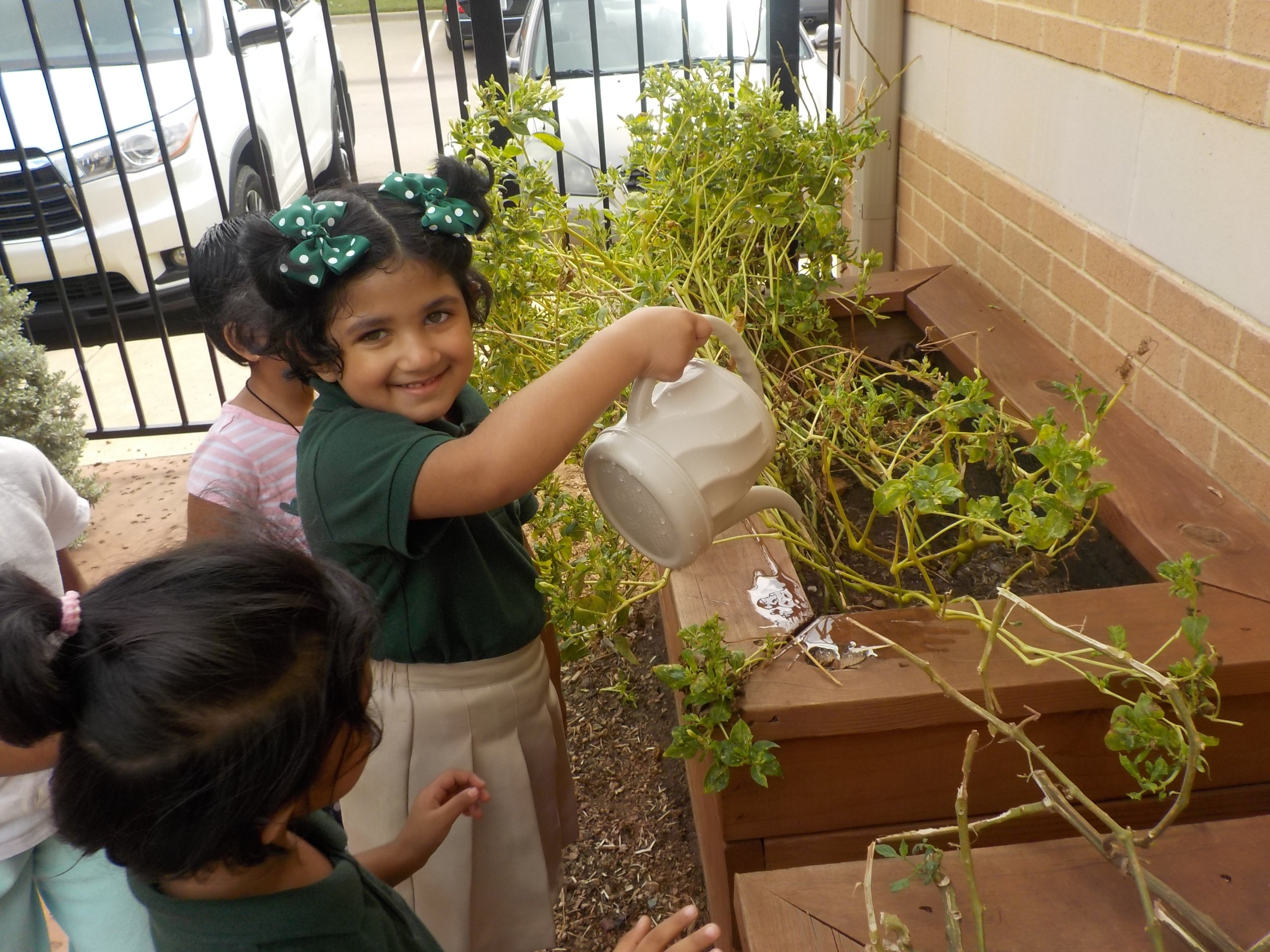 Chores & the Montessori Child