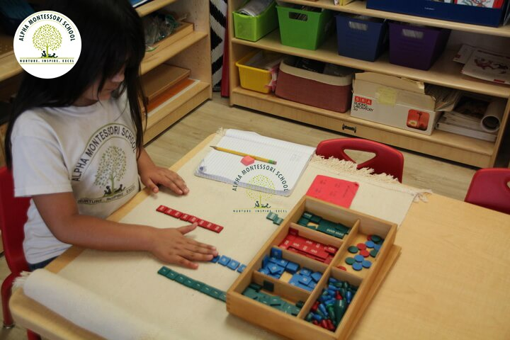Elementary Teaching in Montessori School Plano | Alpha Montessori Plano