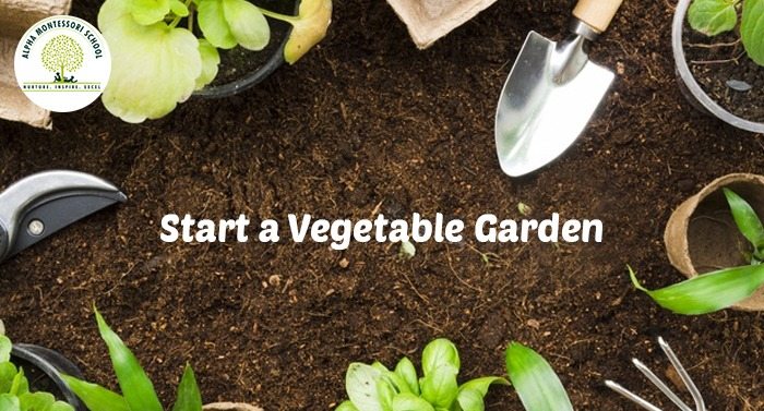 Start a Vegetable Garden- Montessori activites at home