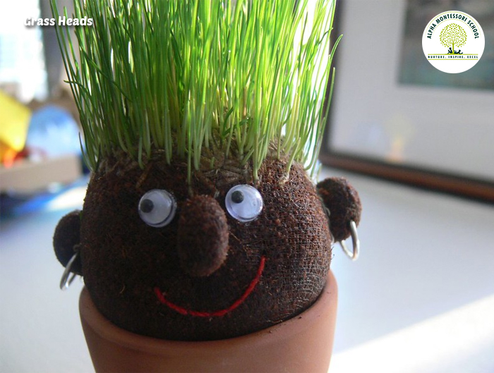 Grass Heads - Alternative Gardening Ideas | Alpha Montessori