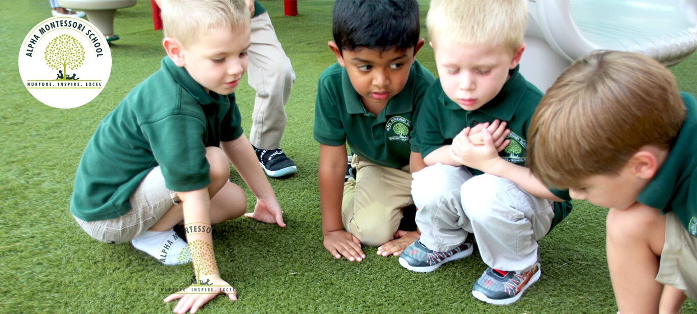 Preschool in Plano | Alpha Montessori School