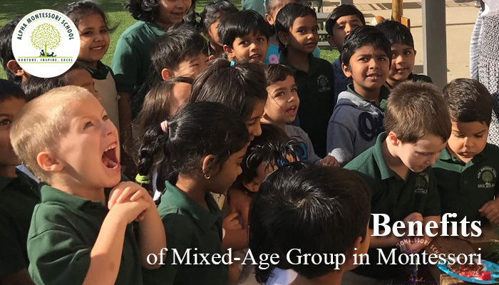 Benefits of Mixed-Age Group in Early Childhood Education