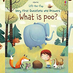 What-is-Poo-Very-First-Lift-the-Flap-Questions-and-Answers